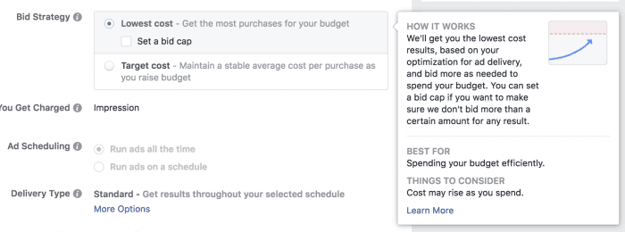 What is the Best Facebook Ad Bidding Strategy? facebook ads lowest cost bid strategy 5
