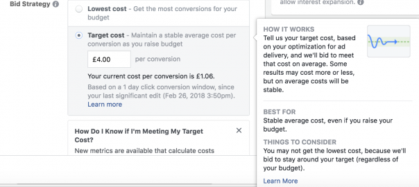 What is the Best Facebook Ad Bidding Strategy? target cost bid strategy 7